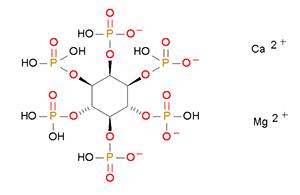 植酸钙镁1.png